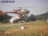 1995 - FF Gödersdorf im Waldbrand-Einsatz mit Helikopterunterstützung